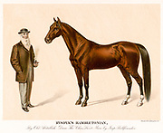 Hambletonian 10, or Rysdyk's Hambletonian, (May 5, 1849 – March 27, 1876) was an American trotter and a founding sire of the Standardbred horse breed. The stallion was born in Sugar Loaf, New York, on 5 May 1849. Hambletonian has been inducted into the Immortals category of the Harness Racing Hall of Fame.  bred by Jonas Seely, Jr., on his farm at Sugar Loaf in Orange County, New York. He was sired by Abdallah, a grandson of the hugely influential Thoroughbred sire, Messenger.