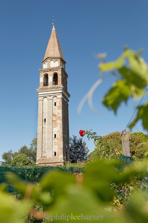Tower and vineyard in the grounds of Hotel Venissa Burano, Venice, Italy, Europe
