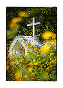SHOT 2/17/19 12:18:43 PM - A single simple, small roadside capilla tucked amongst wildflowers along Highway 307 near Felipe Carrillo Puerto, Quintana Roo, Mexico. Felipe Carrillo Puerto is the municipal seat and largest city in Felipe Carrillo Puerto Municipality in the Mexican state of Quintana Roo. According to the 2010 census, the city's population was 25,744 persons, mostly of Maya descent. The capillas are often dedicated to certain patron saints or individuals who have died at or near the site. Often times they contain prayer candles, pictures, personal artifacts or notes. (Photo by Marc Piscotty / © 2019)