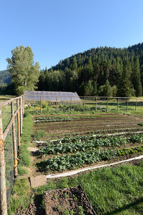 Vegetable garden at the Minam River lodge in Oregon's Wallowa Mountains.
