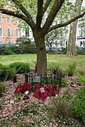The memorial tree in memory of WPC Yvonne Fletcher in St. Jamess Square, on 29th April 2019, in London, England. WPC Yvonne Fletcher, a Metropolitan Police officer, was shot and killed by an unknown gunman on 17 April 1984, during a protest outside the Libyan embassy on St Jamess Square, London. Her death resulted in an eleven-day siege of the embassy, at the end of which those inside were expelled from the country and the United Kingdom severed diplomatic relations with Libya.