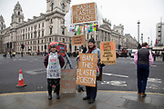 Anti plastics protesters stands in the street in Westminster demonstrating against the overuse of plastic in society and calling for a ban on 22nd January 2020 in London, England, United Kingdom.