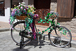 Bicycle with Flowers, Cotacachi City & Market