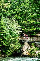Trail of the Cedars nature trail, Glacier National Park, Montana USA