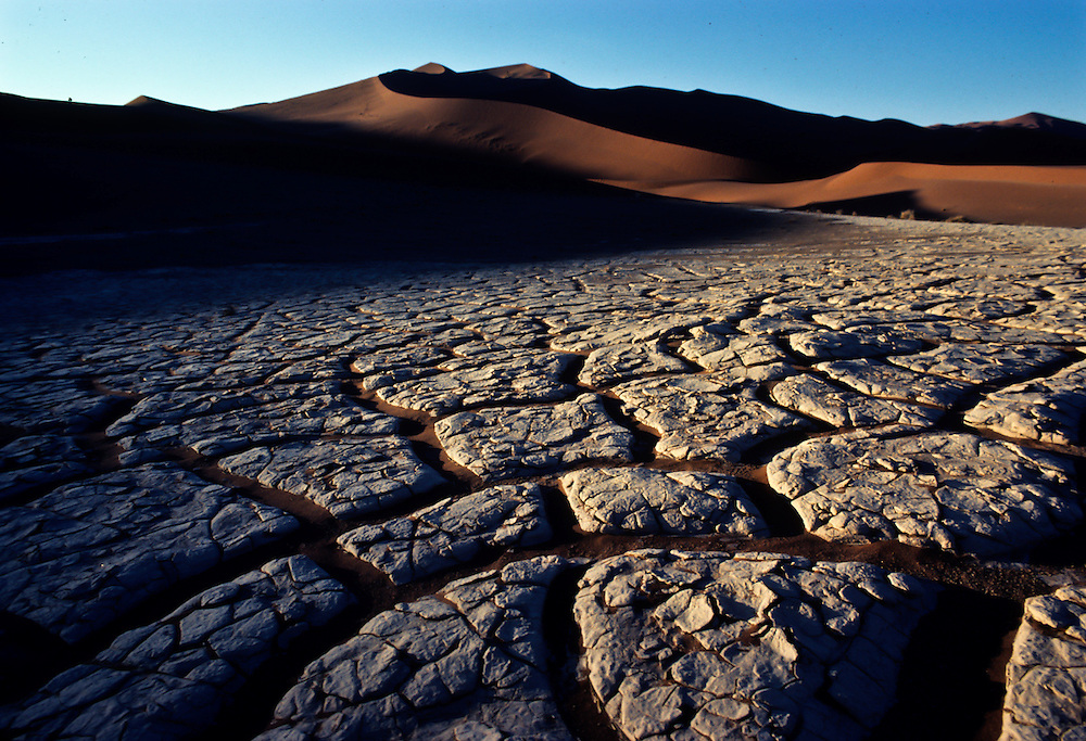 The parched earth in front of dunes in the African desert.