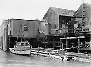 9969-2593. Water front at Old Newport. July 19, 1936.