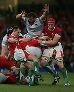 Wales scrum-half Gareth Cooper clears the ball. Invesco perpetual series, Wales v Argentina at the Millennium Stadium in Cardiff on Sat 21st Nov 2009. pic by Andrew Orchard, Andrew Orchard sports photography,