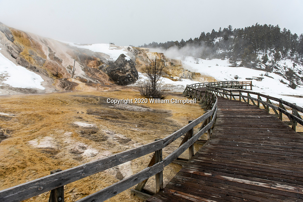 Yellowstone National Park, WY-March 24,2020: Empty boardwalks at the Terraces at Mammoth Hot Springs in Yellowstone National Park on March 24, 2020.Yellowstone National Park closed to visitors on March 24, 2020 because of the Covid-19 virus threat to communities sounding Yellowstone. (Photo by William Campbell-Corbis via Getty Images)
