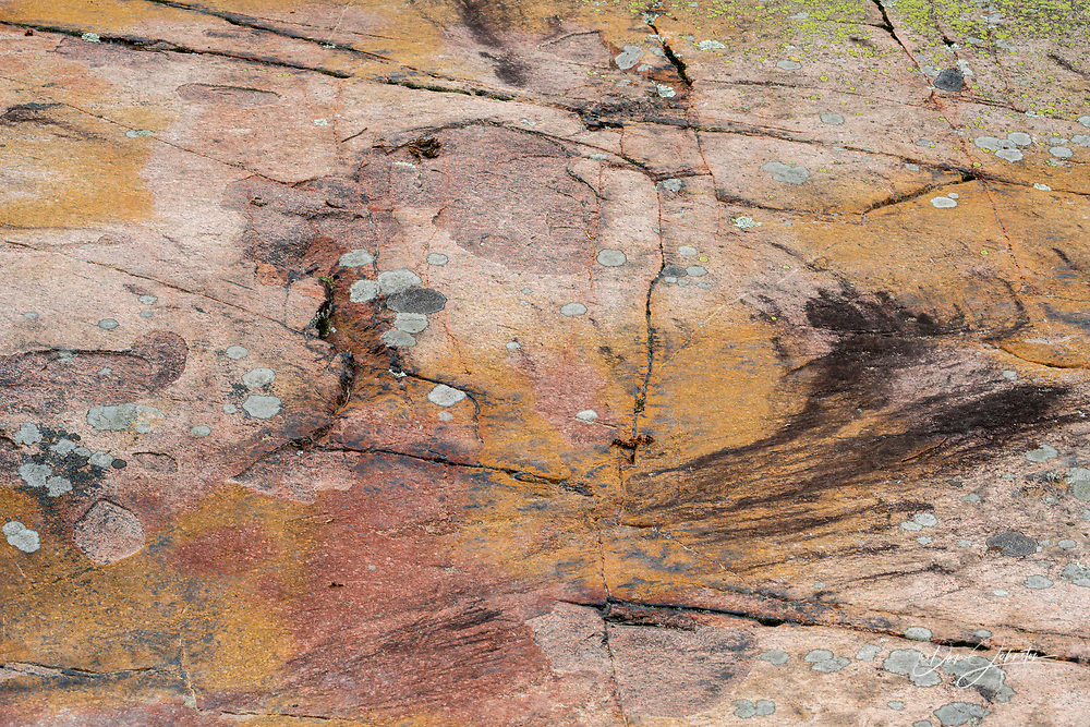 Stained granite outcrops on the Chikanishing trail with lichens, collected pine straw and plants, Killarney Provincial Park, Killarney,, Ontario, Canada