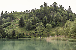 THEMENBILD - der Klammsee und der mit Bäumen bewachsene Bürkogel sind ein beliebtes Erholungsgebiet und Naturschutzgebiet, aufgenommen am 10. Juni 2019, Kaprun, Österreich // Lake Klammsee and Bürkogel, which is covered with trees, are a popular recreation area and nature reserve on 2019/06/10, Kaprun, Austria. EXPA Pictures © 2019, PhotoCredit: EXPA/ Stefanie Oberhauser