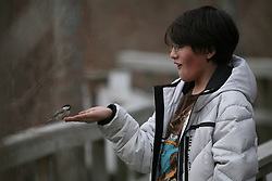 Nathan feeds the birds, Beech Forest, Cape Cod, 2011.