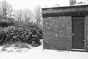 Darkroom in the snow, Whydown, 2 March 2018