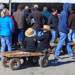 Gordonville, PA, USA / March 10, 2018: Young Amish boys with wagons offer to haul purchased items to buyers cars at the annual Lancaster County Mud Sale at the Gordonville Fire Company.