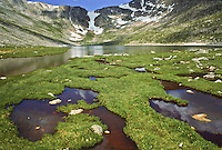 Pools of water are formed by the arctic tundra found around Summit Lake,  Mount Evans.  Front Range Mountains. Colorado,  USA
