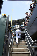 CHICAGO - JULY 03:  Dylan Cease #84 of the Chicago White Sox enters the bullpen prior to making his Major League debut against the Detroit Tigers on July 3, 2019 at Guaranteed Rate Field in Chicago, Illinois.  (Photo by Ron Vesely)  Subject:  Dylan Cease