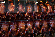 Scene in London's famous Chinatown on Gerrard Street. Crispy Peking Ducks sit well roasted in the window of a Chinese restaurant.