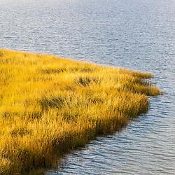 Detail of the salt marsh behind Coast Guard Beach in the Cape Cod National Seashore in Eastham, Massachusetts.