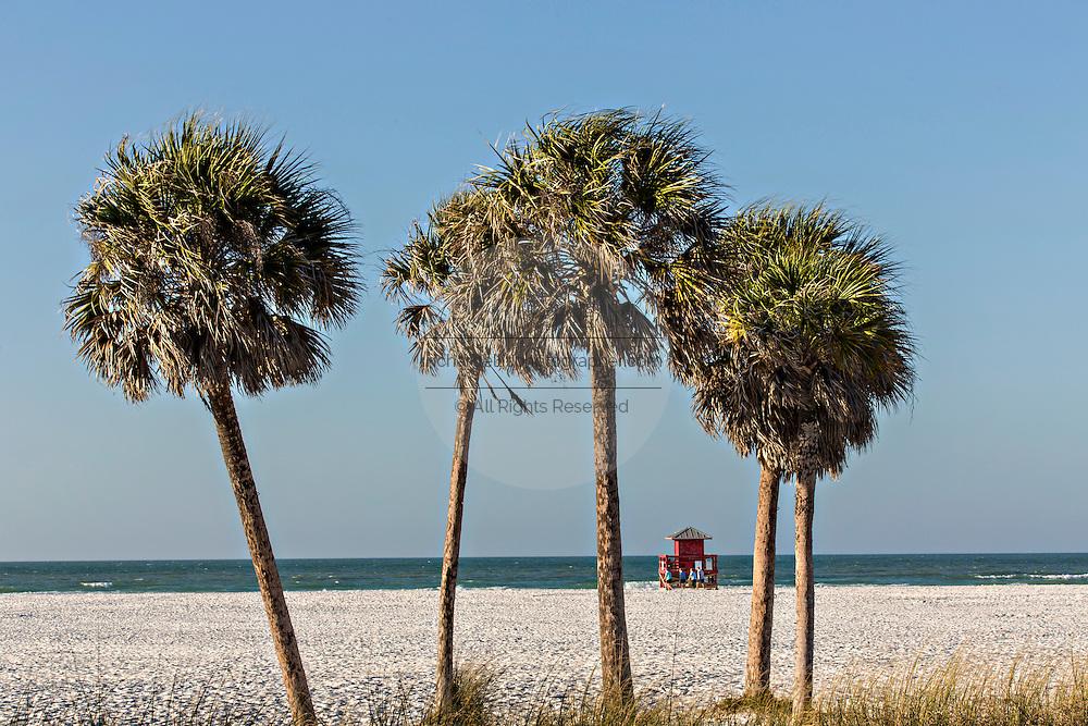 Siesta Key beach Sarasota, Florida