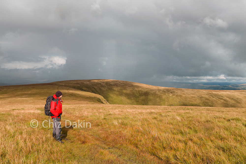 Looking back along the N ridge of Blackcombe