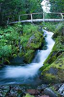 Mount Rainier National Park, WA