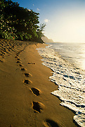 Footprints in Sand, Hanalei, Kauai, Hawaii