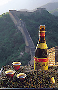 Ant wine, pictured on the famed Great Wall of China, among a kilo of black ants, is actually ant-steeped rice brandy, and is lauded by Chinese traditional medicine doctors for its medicinal treatment of hepatitis-B and rheumatism. (Man Eating Bugs: The Art and Science of Eating Insects)