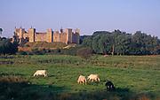 AYBPD8 Framlingham castle Suffolk England