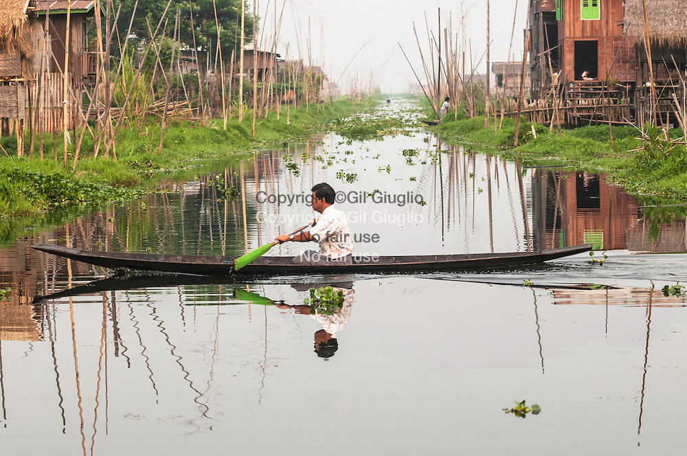 Myanmar, état shan, jardins potagers flottants de l'etnie inthas au nord ouest du Lac Inlé // Myanmar, Shan state, floating vegetable gardens of Inthas ethnic group at north east of Inle lake,