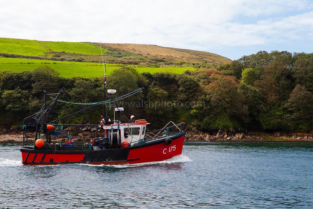 Fishing boat Realt Na Mara C175 in Dingle Bay, Kerry, Ireland