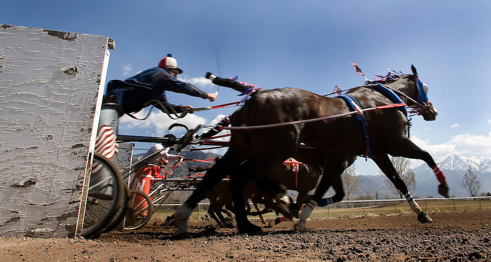 Teams of horses break away from the starting shutes during a the first weekend of the World Championships of Cutter & Chariot Racing is held at the Golden Spike Events Center at the Weber County Fairgrounds in Ogden, Utah , Saturday, March 24, 2007. The final races will be held on Saturday and Sunday March 31st and April 1st at the same location. This weekends races are part of the qualifying races for next weekends finals. August Miller/ Deseret Morning News