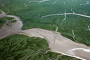 Nederland, Zeeland, Zeeuws-Vlaanderen, 12-06-2009; geulen, slikken en schorren in het Verdronken Land van Saeftinghe, getijdengebied in het oosten Zeeuws-Vlaanderen op de grens met Belgie en onderdeel van het estuarium van de Schelde. De voormalige polder is het grootste brakwatergebied van Europa en staat onder invloed van het getij. Het Verdronken Land is een natuurreservaat, in beheer bij het Zeeuws Landschap en belangrijk als broed-, overwinterings- en rustgebied voor vogels. Niet vrij toegankelijk. .The Drowned Land of Saeftinghe, tidal area in the east of Dutch Flanders on the border with Belgium. The former polder is the largest brackish water of Europe and because of the the tides, there are mud flats and gullies. The Drowned Land is a nature reserve, not freely accessible. It is managed by the Zeeuws Landscape and important as bird sanctuary, part of the Scheldt estuary.Swart collectie, luchtfoto (25 procent toeslag); Swart Collection, aerial photo (additional fee required).foto Siebe Swart / photo Siebe Swart