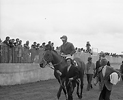 Irish Derby 1973 Irish Derby 1973 The Curragh Raccourse  --(Horse) Weavers' Hall –  Jockey is George McGrath