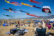 the kite fest is an annual event