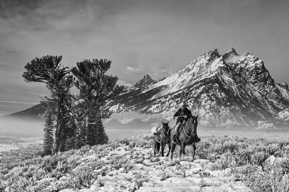 Cowboys and wranglers on horseback in Grand Teton National Park. Subject depicts the Wild West and skills of yesteryear.