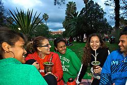 Tradicional ponto de lazer dos porto-alegrenses, o Parque Farroupilha - ou Redençãoo - reúne nos finais de semana milhares de gaúchos de todas as idades para tomar chimarrão e descansar na sombra das palmeiras.. FOTO: Lucas Uebel/Preview.com