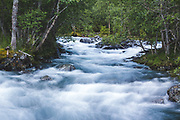 Whitewater | Cold whitewater of little but still quite deep stream, Norway