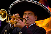 Trumpeter from the Mexican Mariachi Band, the UK's leading Mariachi band performing at the Thames Festival 08, along the southbank of the Thames. <br /> Based in London, they are an authentic ensemble of professional Mexican musicians and singers also bringing together artists from the Americas.