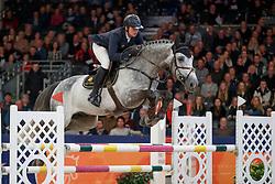 Snels Zoi, NED, Elton John<br /> KWPN Stallionshow - 's Hertogenbosch 2018<br /> © Hippo Foto - Dirk Caremans<br /> 01/02/2018