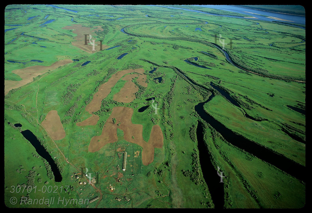 Green island is braided & striped by meandering Lena River in aerial view upriver of Yakutsk. Russia