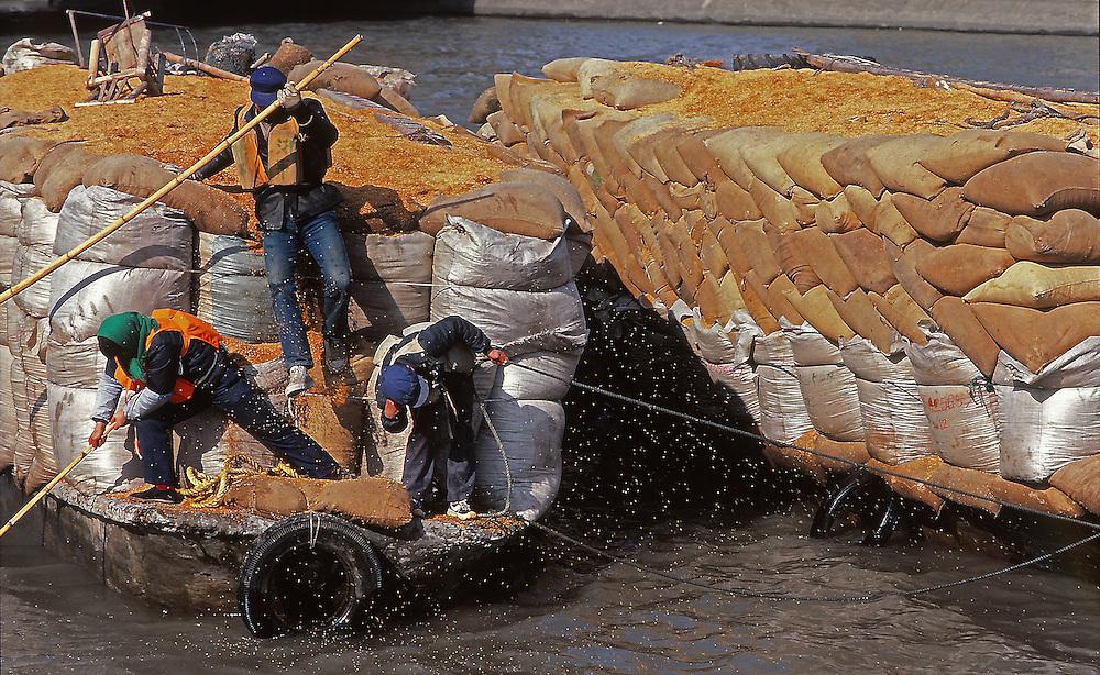 Accident in Shanghai's harbour