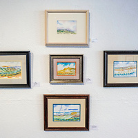 Watercolor paintings from artist David Montelongo's gallery show adorn the walls of Art123 in Gallup Friday.