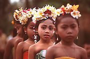 INDONESIA, BALI, CEREMONIES Temple procession with young girls with flowers in their hair walking through  their rural village