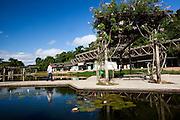 Belo Horizonte_MG, Brasil...Paisagem do Parque das Mangabeiras em Belo Horizonte, Minas Gerais...The landscape in Mangabeiras Park in Belo Horizonte, Minas Gerais...Foto: NIDIN SANCHES / NITRO