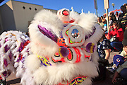 "14 FEBRUARY 2010 - PHOENIX, AZ: Performers do the Lion Dance, a traditional Chinese dance during the Chinese New Year celebration in Phoenix, AZ. This marks the Chinese ""Year of the Tiger."" The Chinese New Year Celebration at the COFCO Chinese Cultural Center in Phoenix attracted thousands of people. The celebration featured traditional Chinese entertainment and food.  PHOTO BY JACK KURTZ"