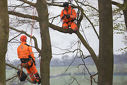 Wendover, UK. 28th April, 2021. Ecologists working on behalf of HS2 Ltd examine trees expected to be felled for the HS2 high-speed rail link in ancient woodland at Jones Hill Wood in the Chilterns AONB. Felling of the woodland which contains resting places and/or breeding sites for pipistrelle, barbastelle, noctule, brown long-eared and natterer's bats has recommenced after a High Court judge yesterday refused campaigner Mark Keir permission to apply for judicial review and lifted an injunction on felling.