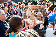 Pet owners and their pets gather for the annual blessing of the animals on the feast day of San Antonio Abad at Oratorio de San Felipe Neri church January 17, 2020 in the historic center of San Miguel de Allende, Guanajuato, Mexico.
