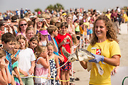 A marine biologist from the South Carolina Aquarium Turtle Rescue Hospital carries a rescued Green Sea Turtle past waiting crowds for release in the Atlantic Ocean July 31, 2013 in Isle of Palms, SC. Three turtles were released after having recovered from a variety of illnesses.