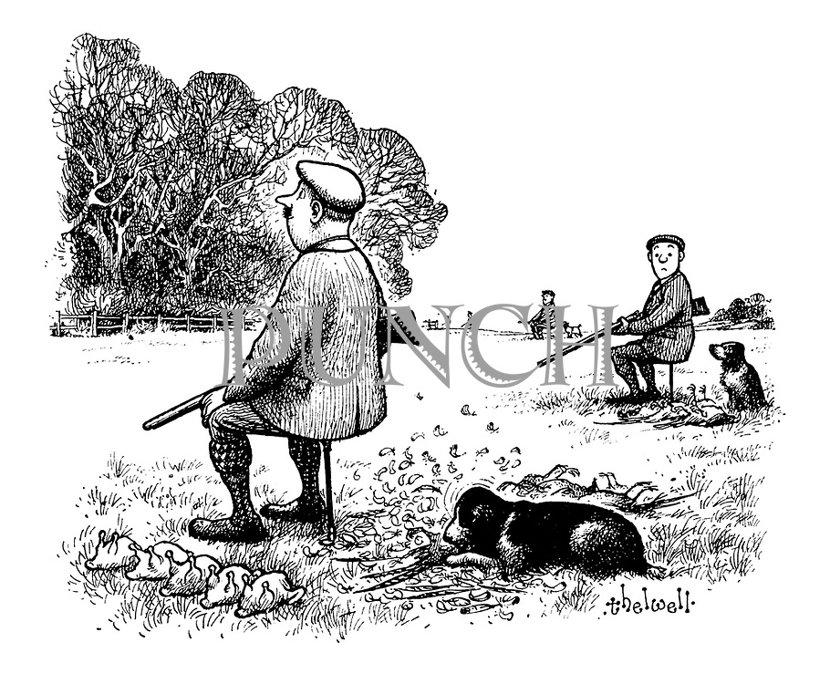 (A game shooter on a pheasant shoot is waiting for the birds to pass over, while behind him his retriever dog is happily devouring a pheasant he has retrieved)