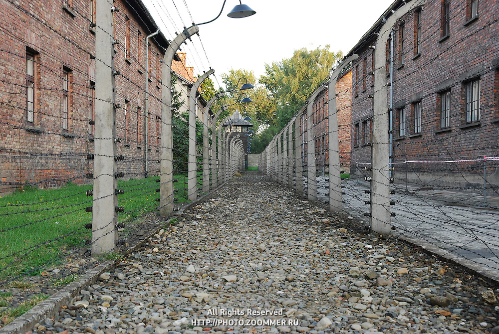 Corridor of wires in Auschwitz concentration camp