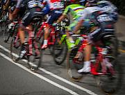 The peloton climbs Montjuic, Barcelona, on the last stage of the Volta Catalunya 2016 cycling race. The leader, Nairo Quintana, successfully defending his jersey from Alberto Contador and Dan Martin.<br /> <br /> El pelotón sube Montjuic, Barcelona, en la última etapa de la carrera ciclista Volta Catalunya 2016. El líder, Nairo Quintana, defendiendo con éxito su maillot de Alberto Contador y Dan Martin.<br /> <br /> El gran grup puja Montjuïc, Barcelona, en l'última etapa de la cursa ciclista Volta Catalunya 2016. El líder, Nairo Quintana, defensant amb èxit el seu mallot d'Alberto Contador i Dan Martin.